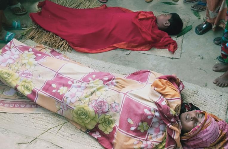 মান্দায় জলাশয়ে অবৈধ বিদ্যুৎ সংযোগে ফুফু-ভাতিজার মৃত্যু