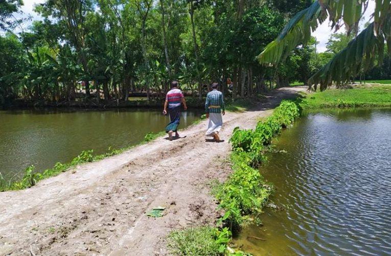 কলাপাড়ায় সরকারী খালে অবৈধ বাঁধ দিয়ে মাছ চাষ, ক্ষতিগ্রস্ত ৩'শ পরিবার