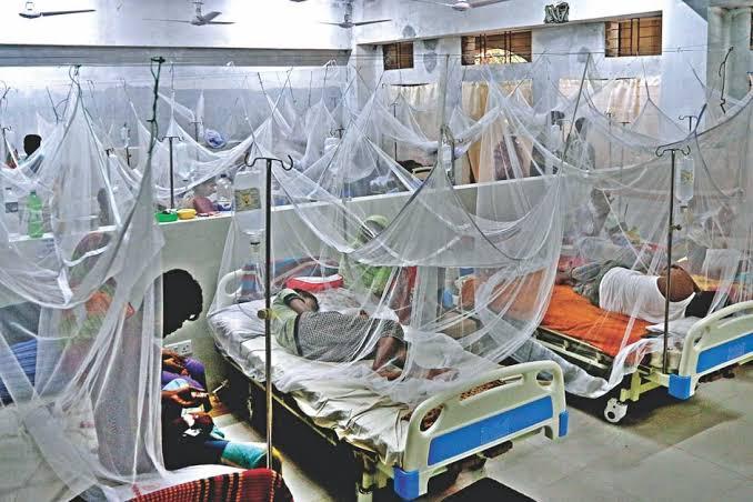 ডেঙ্গু আক্রান্ত হয়ে ২৪ ঘণ্টায় আরও ২৫৫ জন হাসপাতালে ভর্তি